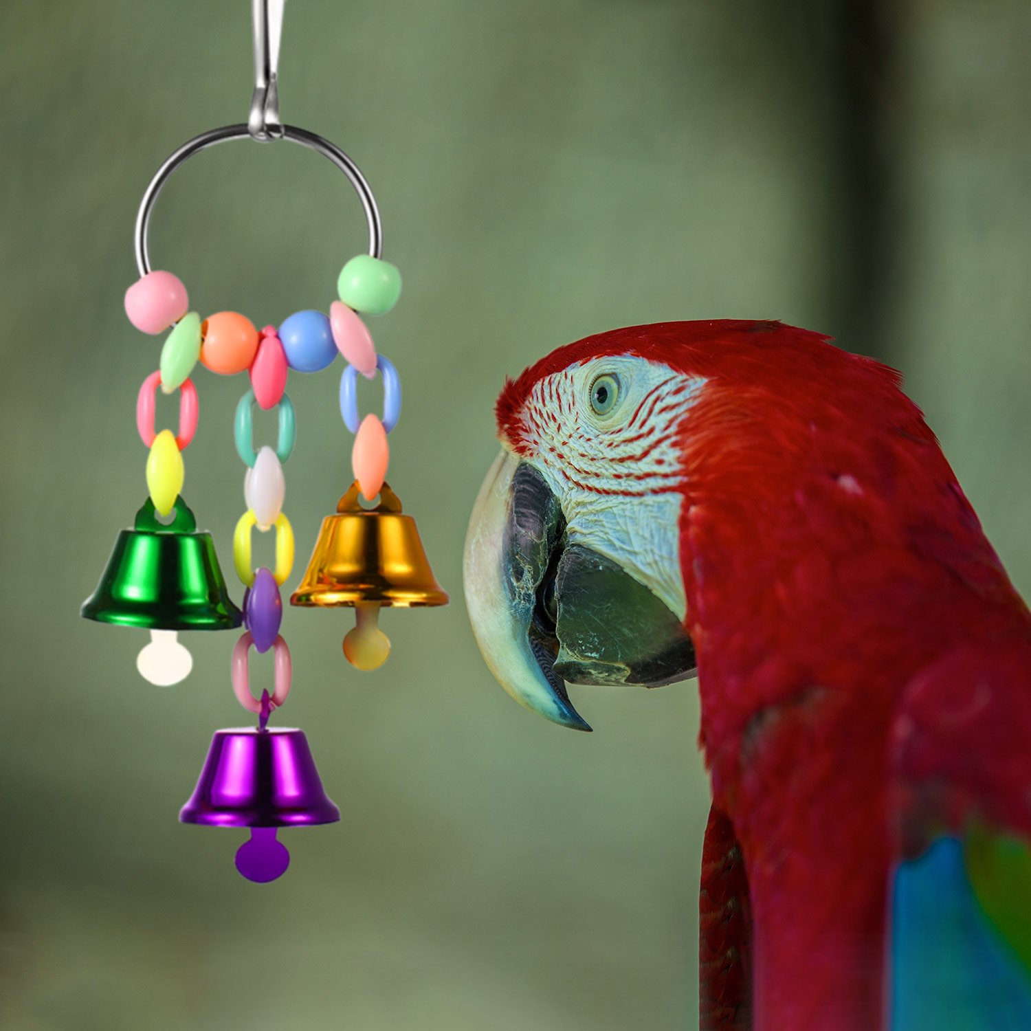Zhehao 5 Pieces Bird Swing Toys Bell with Colorful Natural Wood Hammock Hanging Perch for Small and Medium Birds Parakeets Cockatiels Conures Macaws Parrots Love Birds Finches by Zhehao (Image #3)
