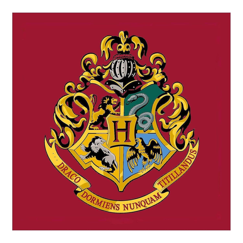 Harry Potter Hogwarts 'Emblem' Square Rug Bedroom Floor Mat Kidco
