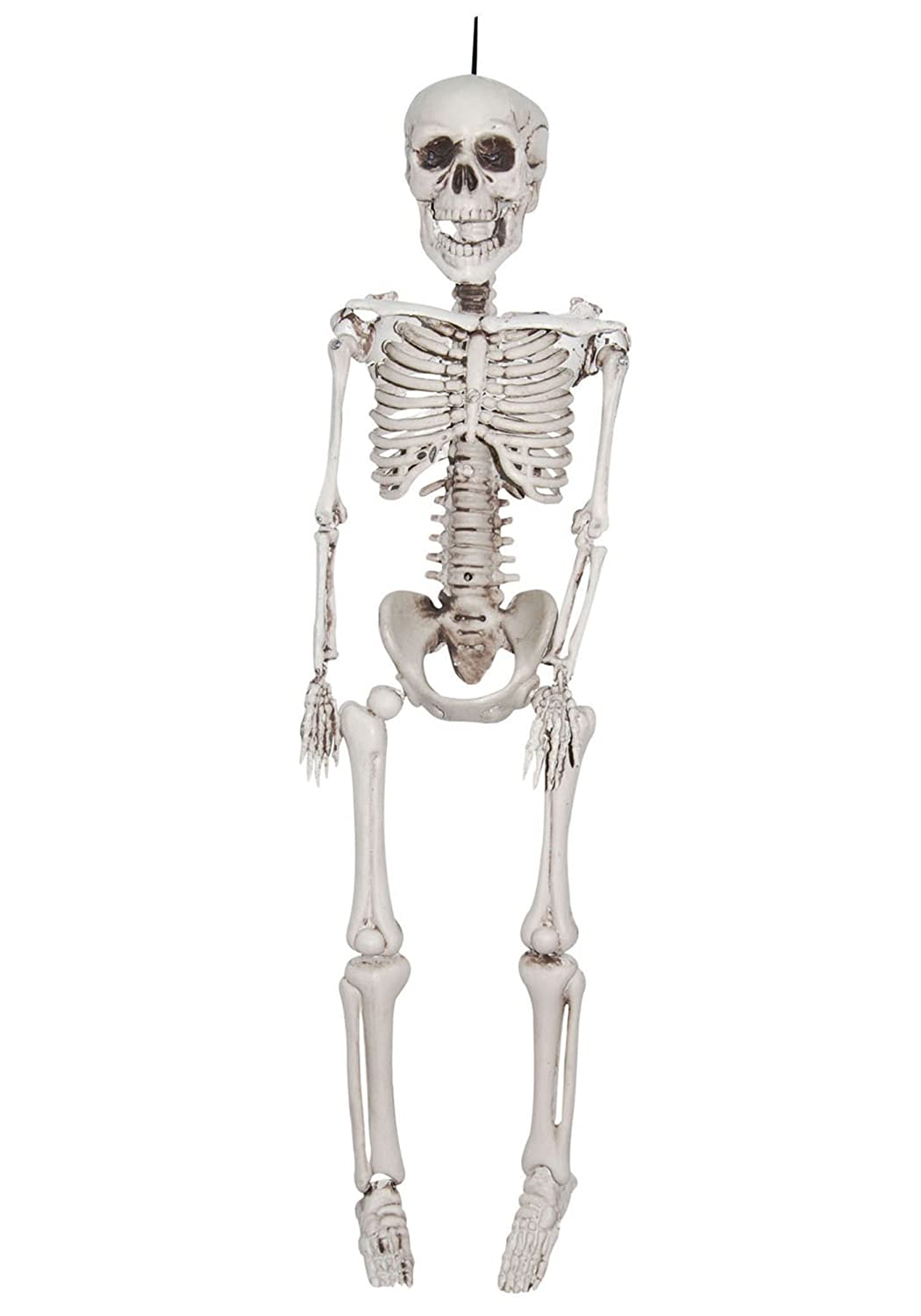 amazoncom 20 inch plastic realistic skeleton standard toys games - Skeleton Decorations