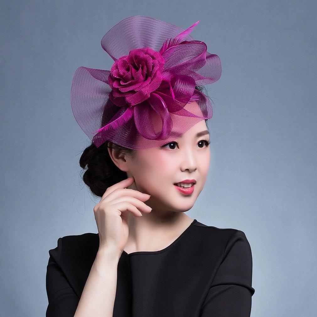 Lukis Fascinator Chapeau Bibi Voilette Pois Fleur Plume Mariage C/ér/émonie Cocktail Pince /à Cheveux Femme Fille