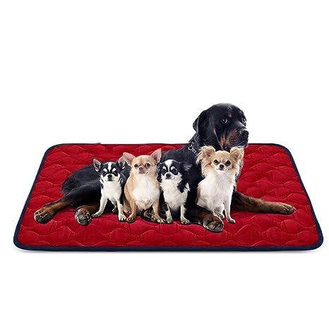 Hero Dog Cama Colchoneta Perro Grande Lavable, Cojines para Mascotas Antideslizante Vellón Almohadilla Suave 140x100. Pasa el ...