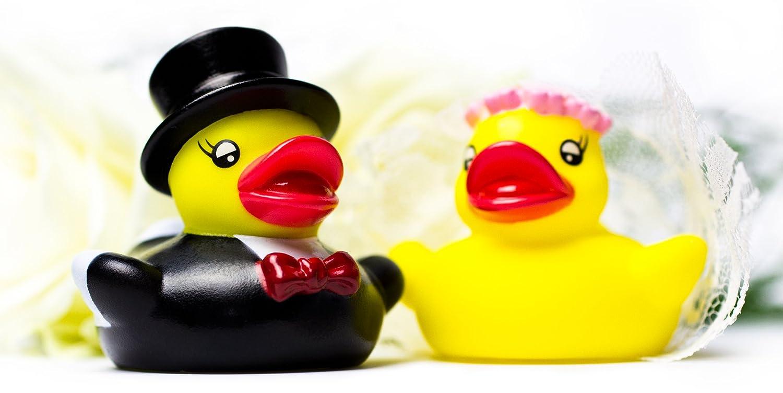Purovi/® Patos de Goma Vestidos de Novia y Novio Perfecto para Regalo