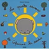 Les quatre saisons de Capucine la souris