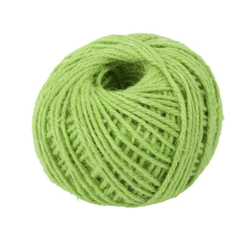 RayLineDo® 2mm Jute Twine String 3-Ply 100 Meter Hemp Rope Cord for Tag, Gifts Wrapping, Wedding Decoration, Office, Gardening Projects in Light Green