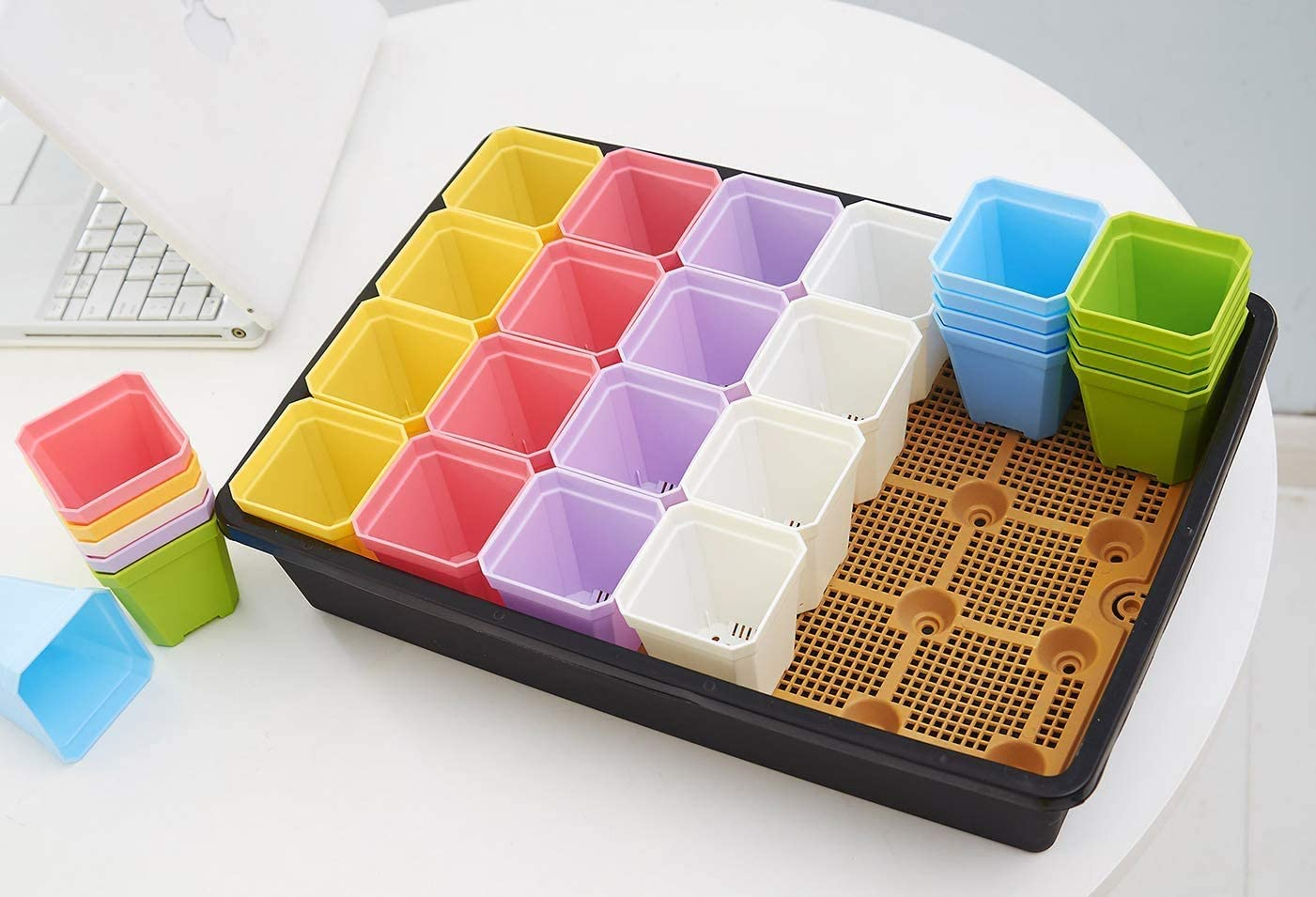"""Small Plant Pots Kit Planter Indoor 2.7"""" Six Colors Set of 24 Garden Flower Seedling Garden Trays Kit for Planting in Apartment Falts (2.7"""" Kit Without Lid)"""