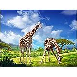 """3D lenticular Poster Giraffe (16 """"x12 """") 40x30cm"""