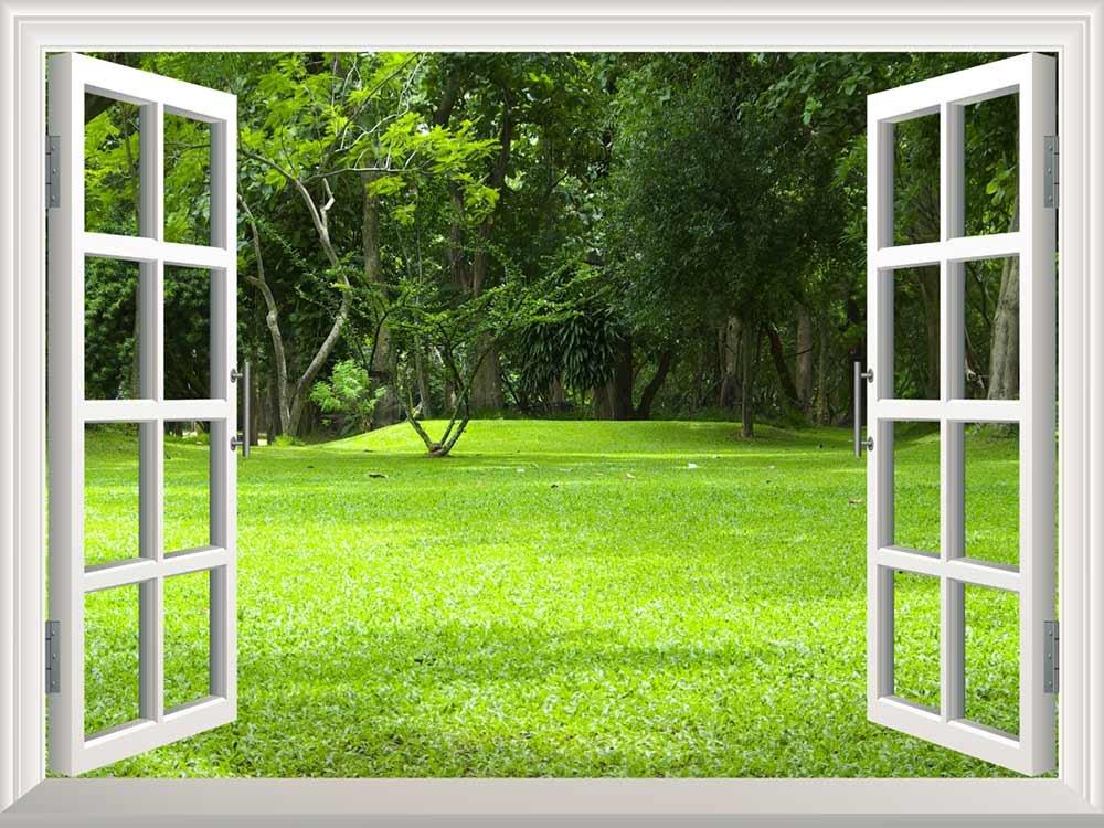 Wall Mural Garden Green Grass Creative Window View