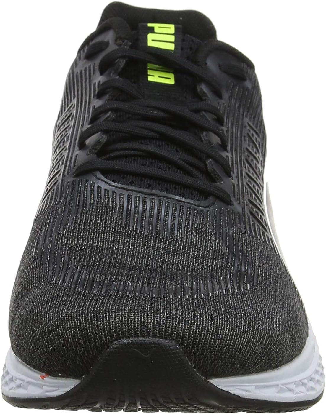 Zapatos de Cordones Brogue para Hombre Daniel Hechter 812756011111
