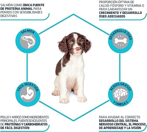 Advance Sensitive Puppy - Pienso para Cachorros con ...