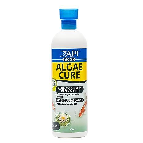 Algae Cure, producto para el cuidado de peceras, de Mars Fishcare Europa