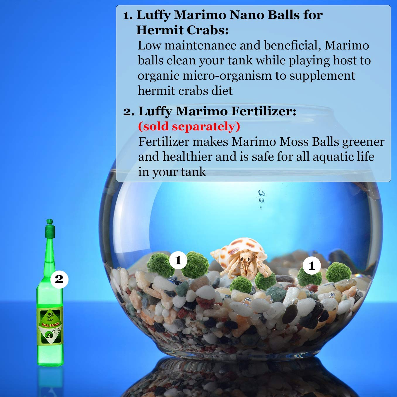 - Luffy 6 Nano Marimo Moss Balls for Children Great for Educational Crafts and Do It Yourself Projects Vibrant Green Living Aquatic Plant Perfect Art /& Craft gift for snooping kids