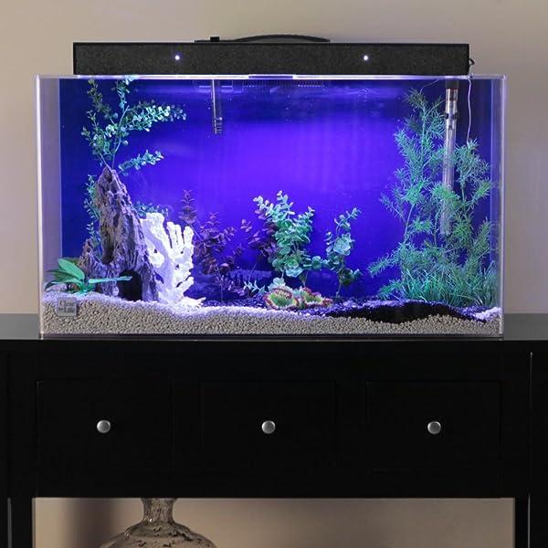 75-Gallon-Fish-Tank