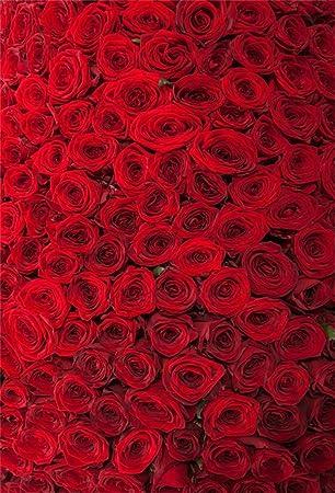 Aofoto 5 X 7ft Telon De Fondo Rosas Rojas Romanticas Flores