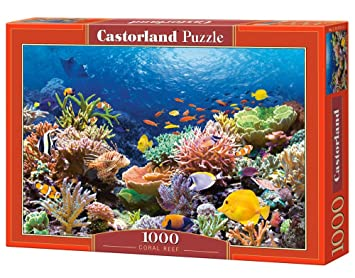 Amazon castorland coral reef fishes puzzle 1000 piece castorland quotcoral reef fishesquot sciox Image collections