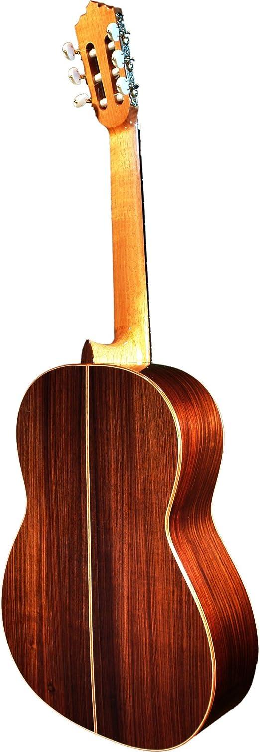 Francisco Molina 992346 - Guitarra clásica: Amazon.es ...