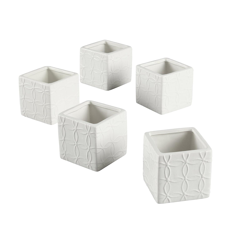 Amazon.com: Ivy Lane Design Flourished Square Favor Flower Pot ...