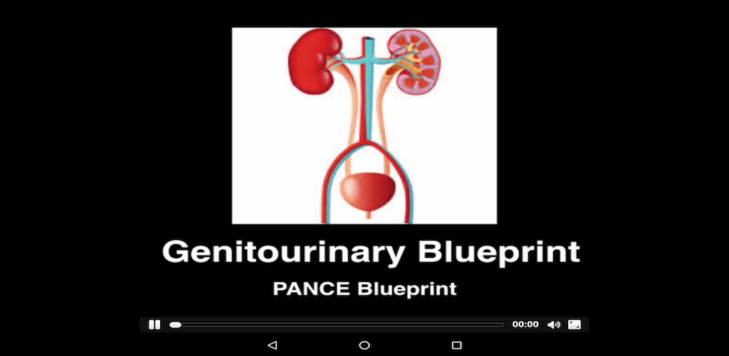 Amazon genitourinary blueprint pance panre review course 000 malvernweather Images