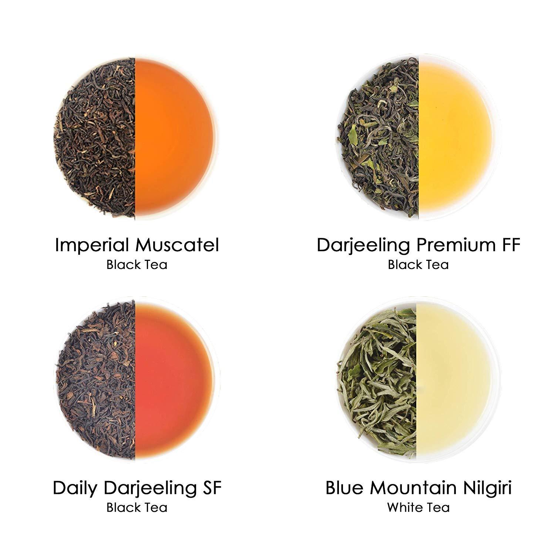 Assorted Loose Leaf Tea Sampler | 20 TEAS, 100 SERVINGS | Black, Green, Oolong, White, Chai & Herbal Teas | 100% NATURAL INGREDIENTS | 20 Individually Packed Bags | Brew Hot, Iced or Kombucha Tea