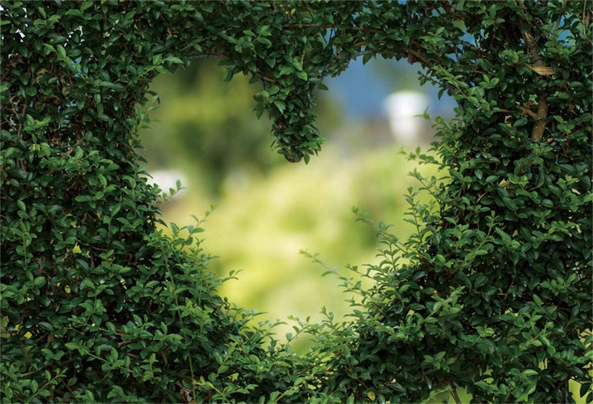 YEELE 10x8ft Love Photography Backdrop Green Plant Wall Love Heart with Blurry Scene Background Kid Baby Couples Adult Portrait Valentines Day Mothers Day Photoshoot Props Digital Wallpaper