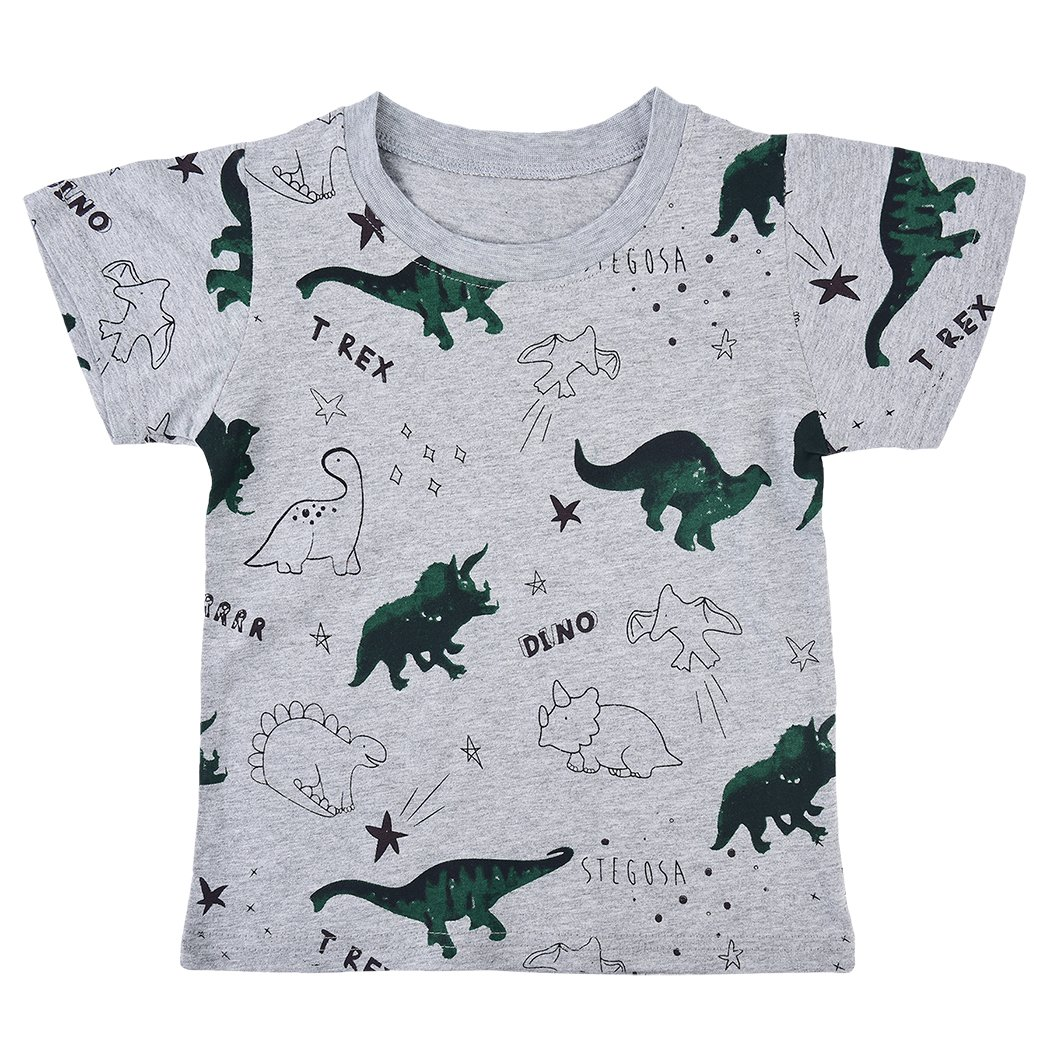 Little Boys Dinosaur Sweatshirt Toddler Top T-Shirt Rex Dino Baby Easter Clothes