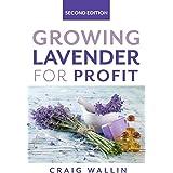 Growing Lavender for Profit