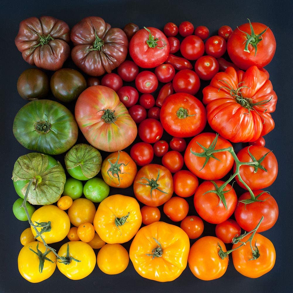 Graines de tomate//Choisissez entre 85 vari/ét/és Heirloom Seeds organiques AGROBITS Tomate Noir 10 graines Ananas