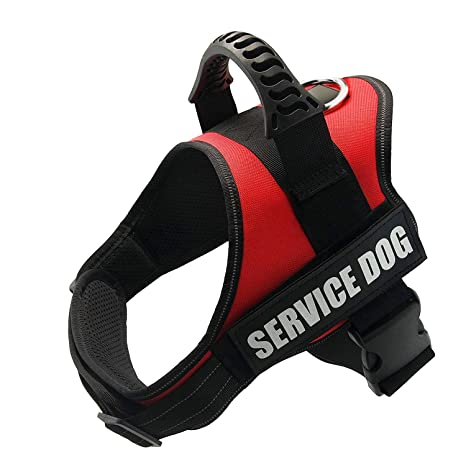 Amazoncom Fayogoo Dog Vest Harness For Service Dogs Comfortable