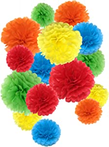 Tissue Paper Pom Poms Paper Flowers for Wedding Decor Birthday Celebration Wedding Party and Outdoor Decoration 15 Pcs of 8,10,14 Inch (Rainbow)