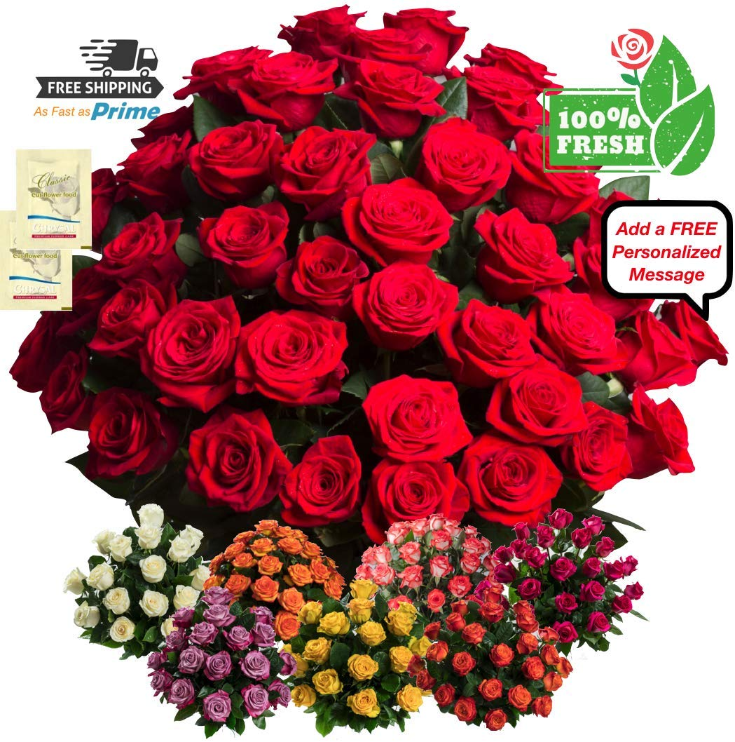 Birthday Flowers for delivery on Amazon Bouquet of 50 RED Fresh Roses Delivered with Free Flower Food Packet. Long Stem Rose in Bud Form. Guaranteed Best Flower Gift for Birthday Anniversary Wedding