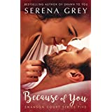 Because of You (Swanson Court Book 5)