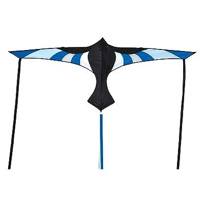 In the Breeze Cool Bird Wings Kite : Garden & Outdoor