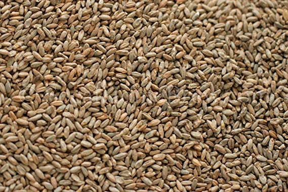 Rye Malt (5 lb) by Briess
