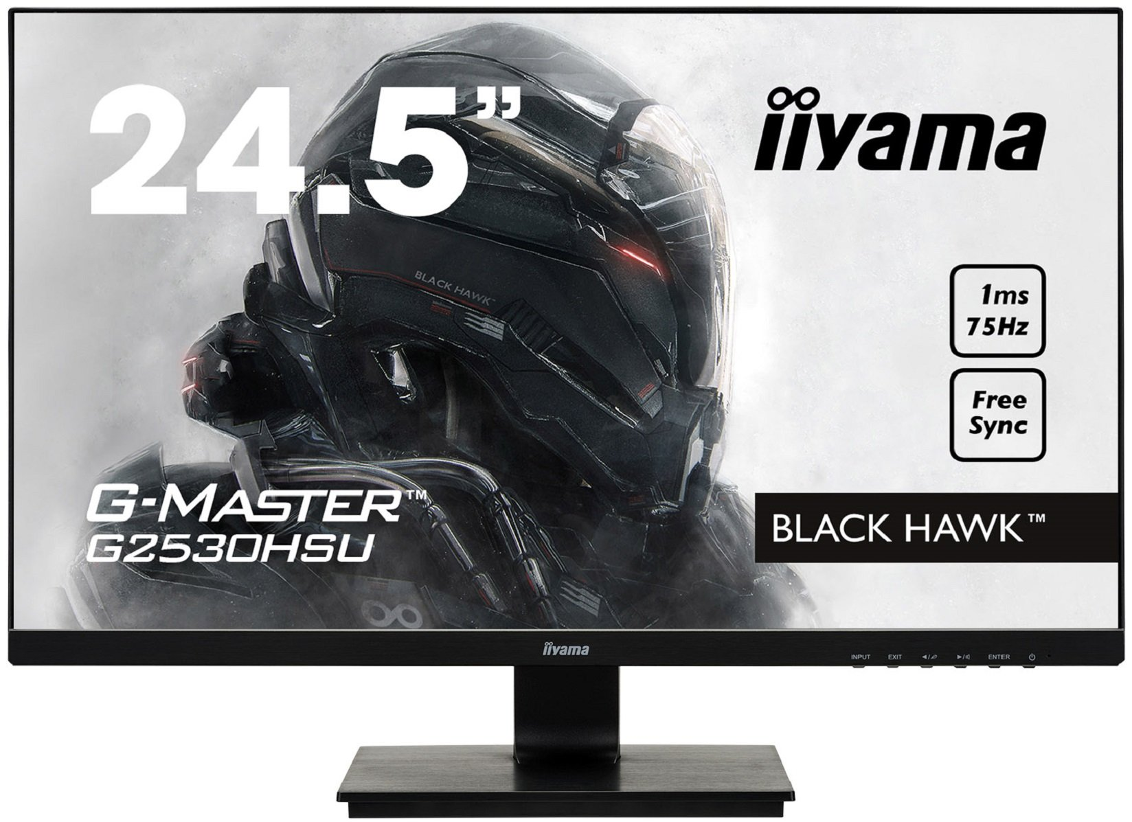 "IIYAMA Black Hawk Moniteur Grand Public 24,5"" (62,2 cm) HDMI 1920 x 1080 Noir product image"