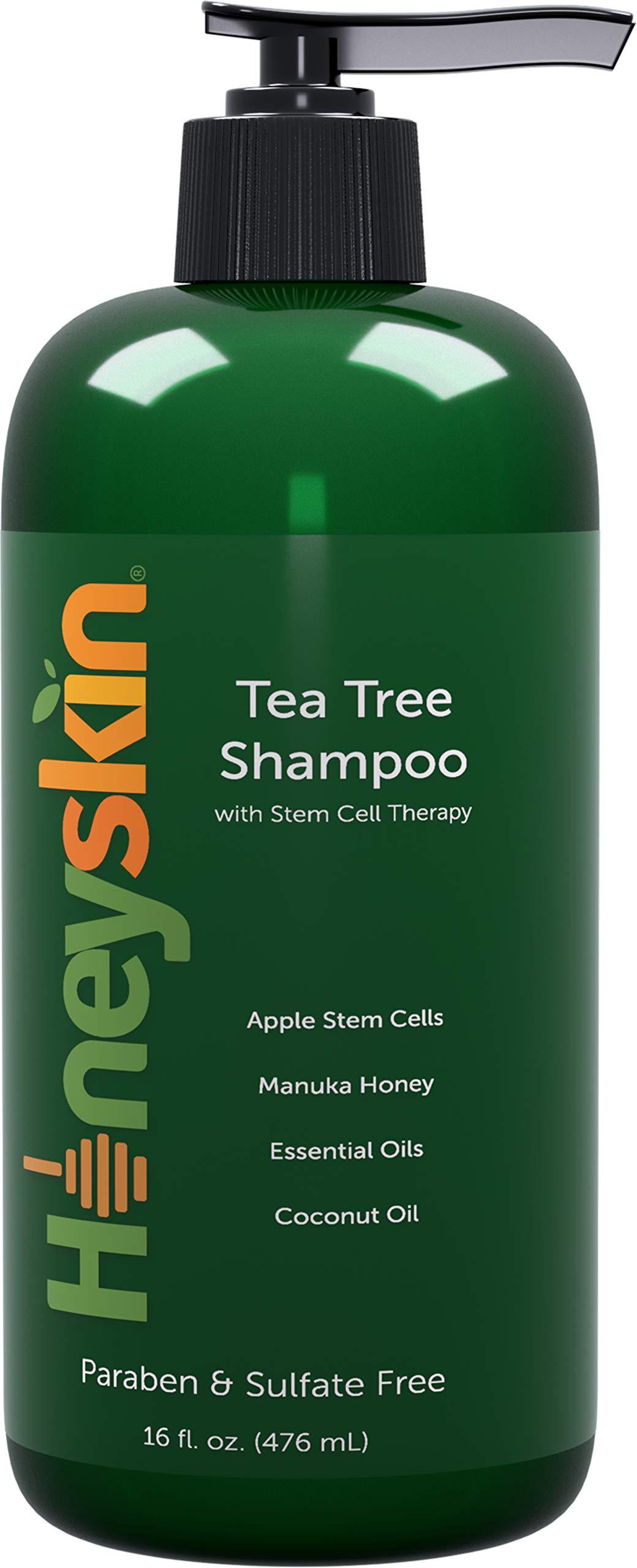 Organic Tea Tree Oil Shampoo - Hydrating Dandruff Hair Loss Itchy & Dry Damaged Scalp Treatment - Natural & Organic - Paraben and Sulfate Free - Manuka Honey, Coconut Oil and Stem Cells - 16oz by Honeyskin Organics