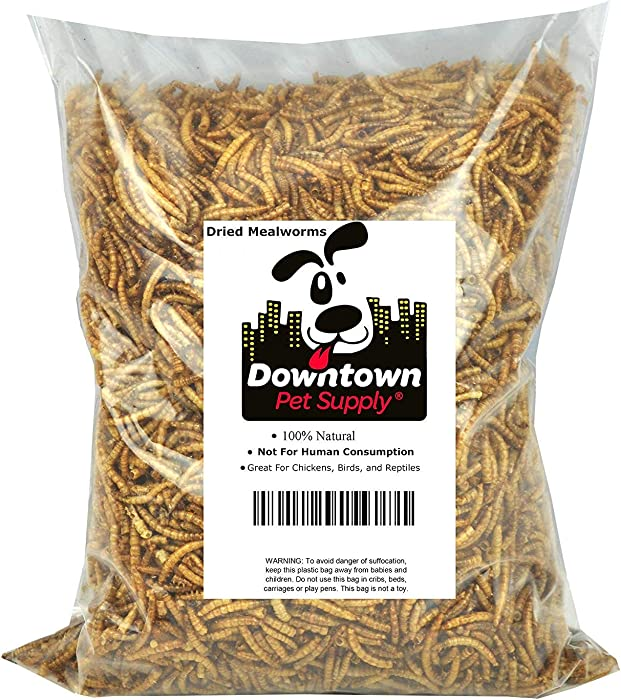 Downtown Pet Supply Dried Mealworms 100% Natural Treats for Wild Birds, Chickens, Reptiles, Fish - Food for Birds, Turkeys