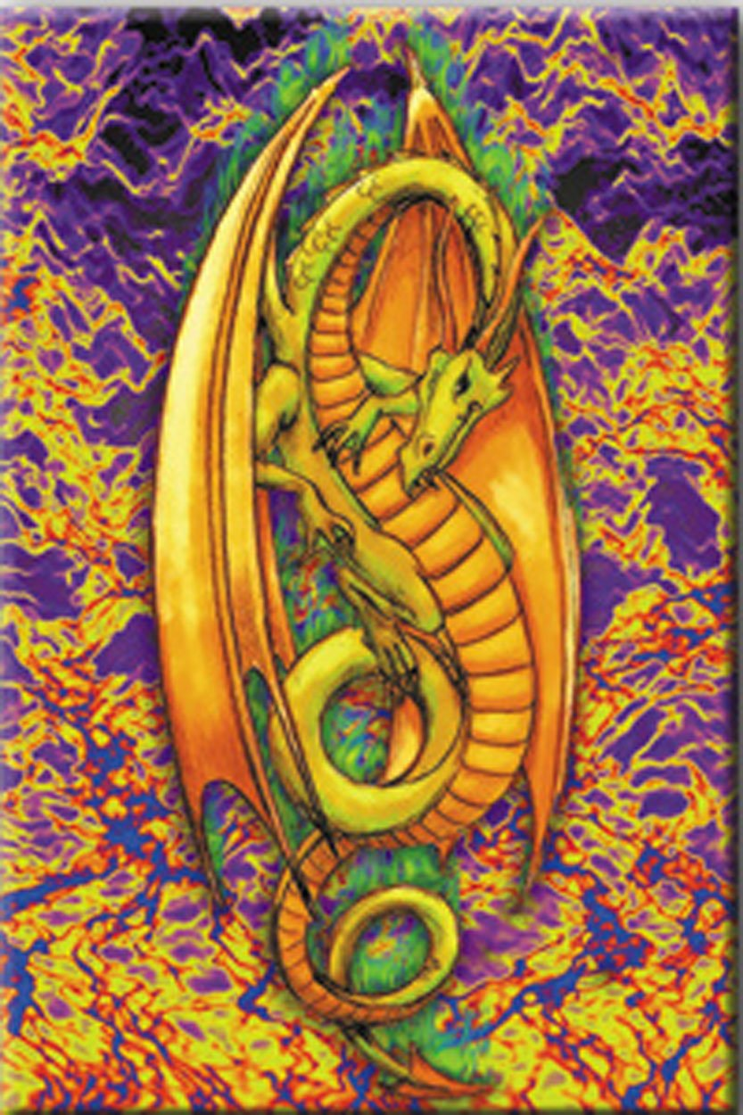 Licenses Products Generic Green Flame Dragon Magnet