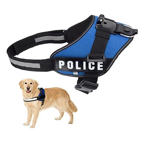 Fetch Arnés del perro, dualane cámara pecho apoyo hombro correa cinturón ajustable Kit de soporte