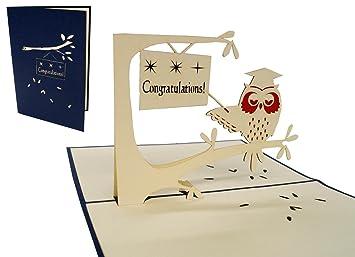 Lin pop up greeting card 3d cards congratulations on passing your lin pop up greeting card 3d cards congratulations on passing your exam owl with m4hsunfo