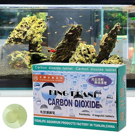 wentingZWT_Aquarium CO2 Tableta Dióxido de Carbono para Plantas pecera Difusor de Hierbas acuáticas: Amazon.es: Productos para mascotas