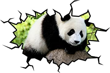 Amazon Com Panda Bear Wall Decal Panda Wall Sticker Hole In The