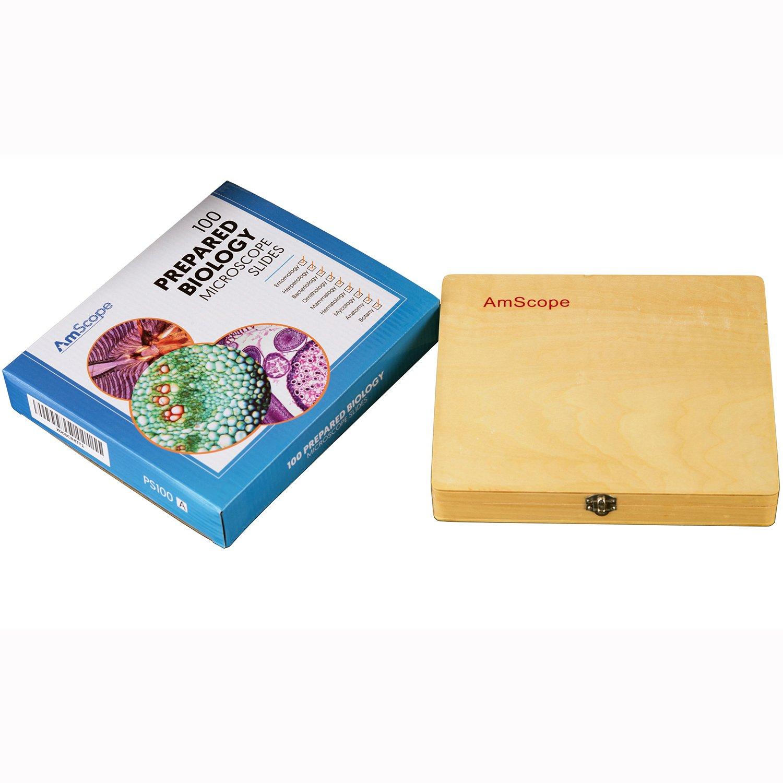 /Set e Amscope PS100E 100/Homeschool Biology prepared Microscope Slides/