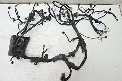 amazon com toyota prius v headlight engine room bay wiring harness rh amazon com 2005 Prius Fuse Box Toyota Prius Fuse Box
