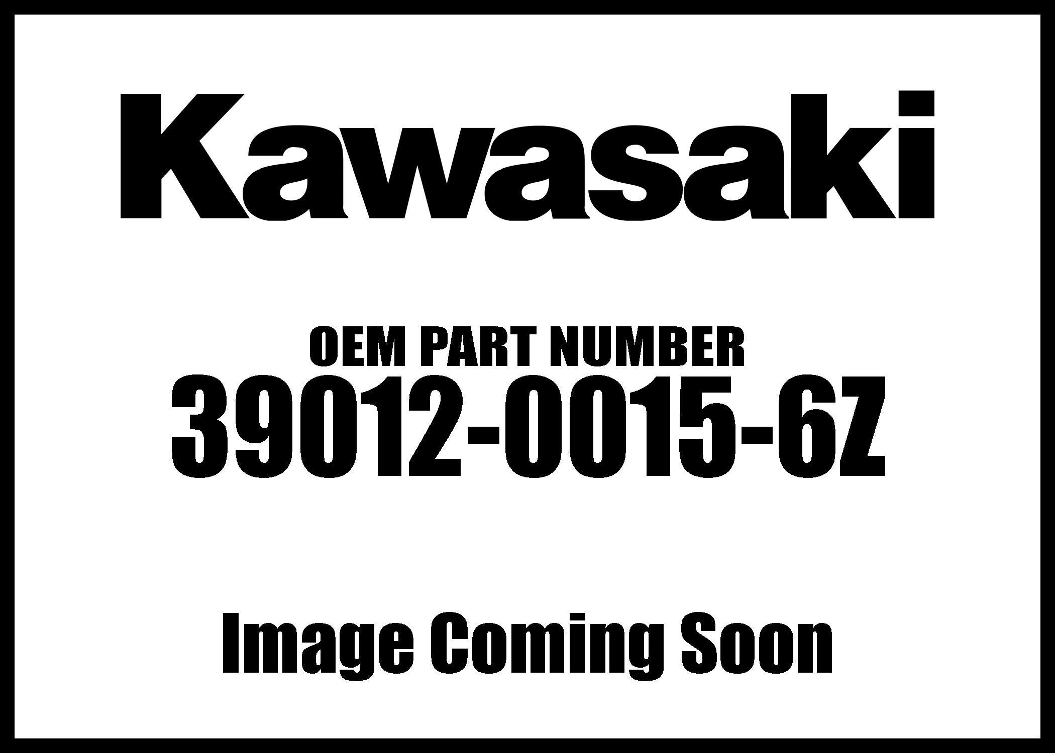 Kawasaki 08-18 Brute Force Case Storage F.Black 39012-0015-6Z New Oem by Kawasaki