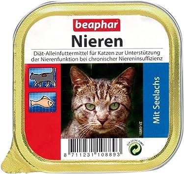Nierendiät für Katzen