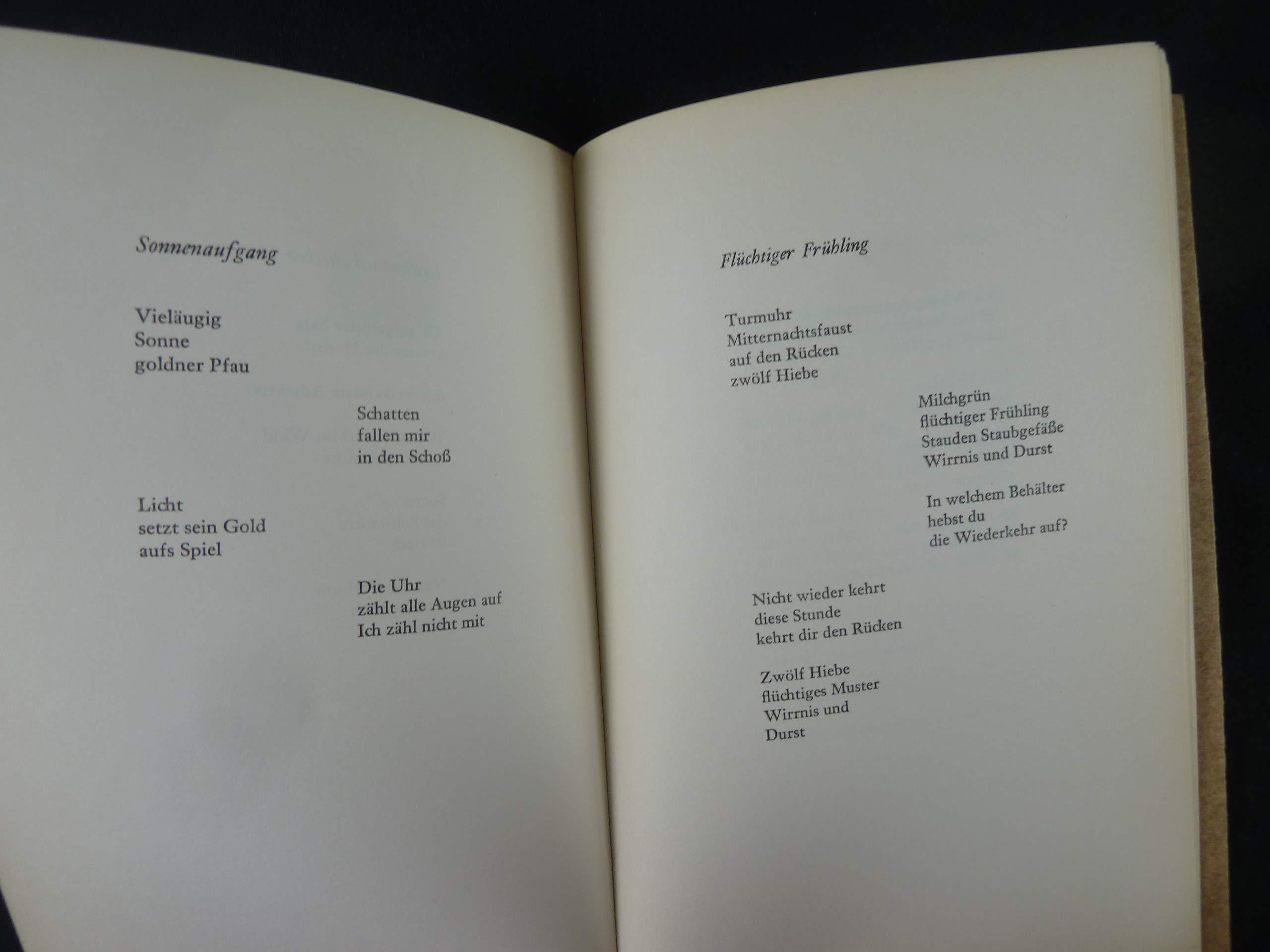 36 Gerechte Gedichte Amazonde Rose Ausländer Bã¼cher