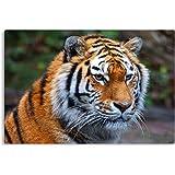 """/""""Tiger/"""" Schreibtischunterlage 58,5x38,5cm"""