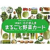 実物大・そのまんま まるごと野菜カード (群羊社のたのしい食育教材シリーズ)