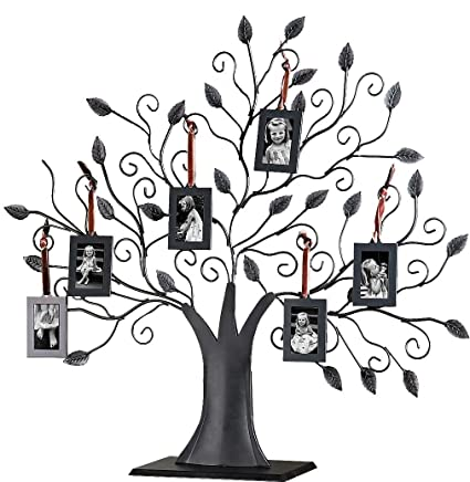 Amazon.com - Klikel Bronze Metal Family Tree with 6 Hanging Picture ...