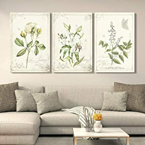 "wall26 3 Panel Canvas Wall Art - Vintage Style Plants and Flowers - Giclee Print Gallery Wrap Modern Home Art Ready to Hang - 16""x24"" x 3 Panels"