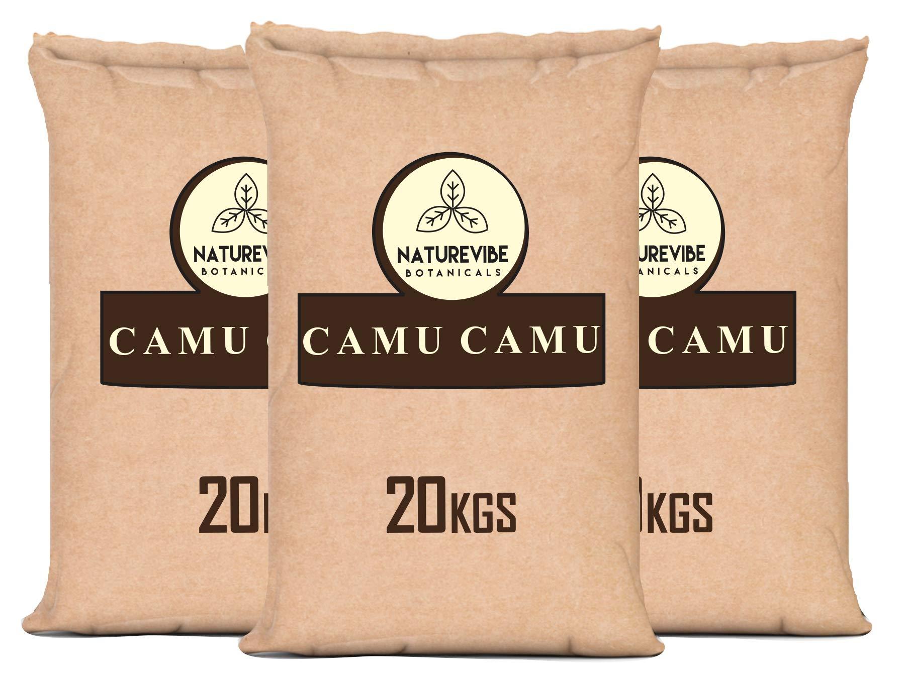 Naturevibe Botanicals Organic Camu Camu Powder 44 lbs, 20 kg Paper Bulk Bag …